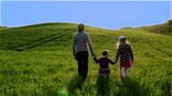 Three children are walking by the green meadow on a blue sky background. video