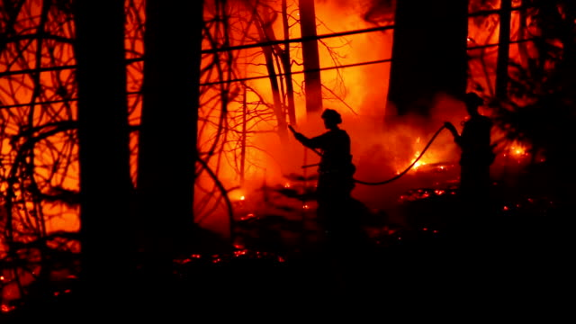 Three courageous fire fighters battle forest fire video