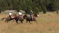 Three cowboys on horses, slow motion video