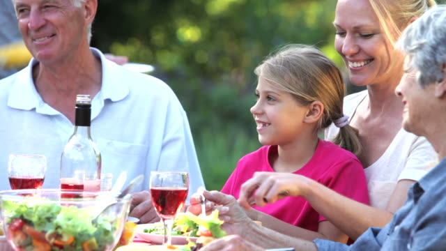 Three Generation Family Enjoying Summer Barbeque Together video