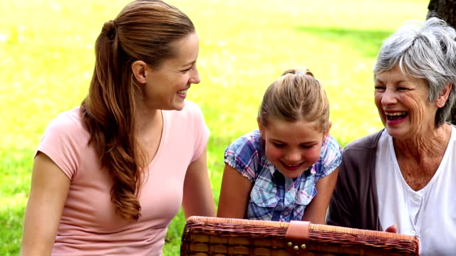 Three generations of women having a picnic video