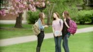 Three girls on school campus video