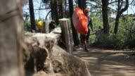 Three kayakers walk along path video