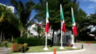 Three Mexican flags video