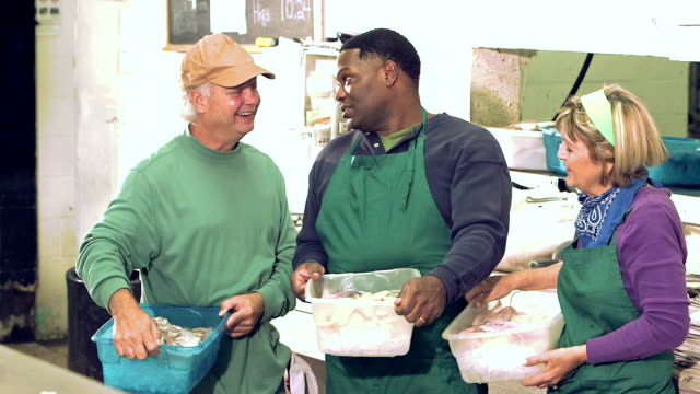 Three multi-ethnic workers in a fish market video