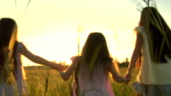 HD Three Sisters Hold Hands in Field video