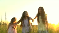 HD Three Sisters Hug in Golden Field video
