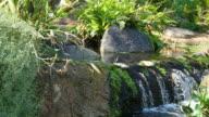 Three videos of waterfall in 4K video