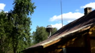 Three white storks on electricity pole near rural village house video
