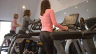 Three woman exercise on equipment at a gym, low angle video