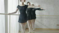 Three Young and Beautiful Ballerinas Practicing their Dance at the Barre. They Wear Black Tutus and White Tights. Shot on a Sunny and Bright Day in a Modern Studio. In Slow Motion. video