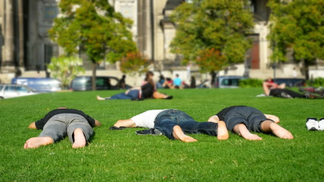 T/L Three Young Men Sleeping On Meadow video