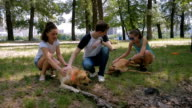 Three young people caress dogs on grass in park video