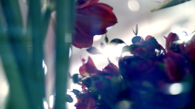 Through the show-window of a flower shop, you can see many different flowers and bouquets video