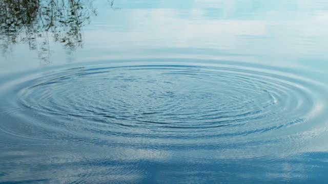 Throw a stone into a lake. Ripple Circle on lake video