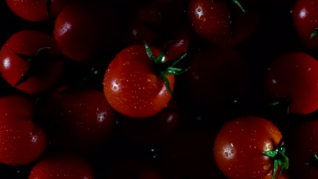 Thrown Tomatoes video