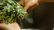 Thyme and sage for salad. video