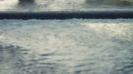 Tiber River Rapid video