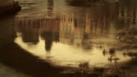 Tiber River Water Reflection video