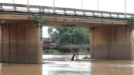 Timber under the bridge. video