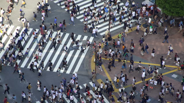 Time Lapse Aerial view of Shibuya Crossing in Tokyo, Japan video