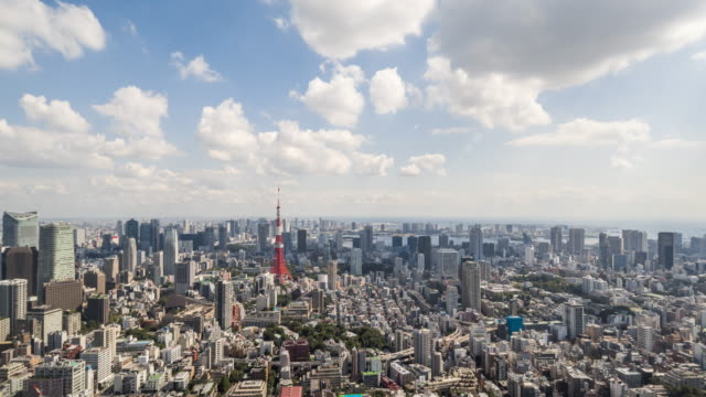 Time Lapse - Elevated View of Tokyo Skyline (Zoom In) video