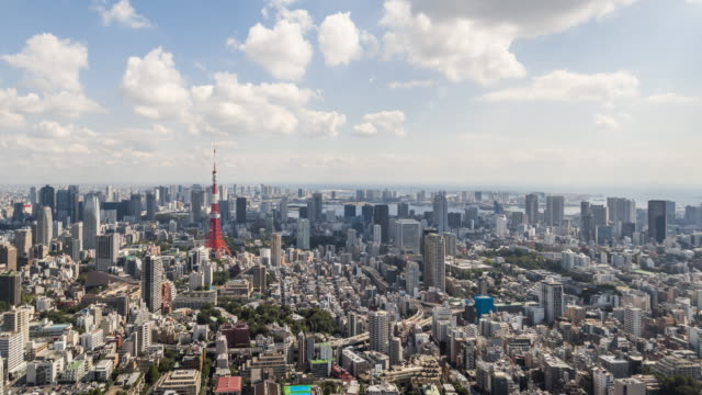 Time Lapse - Elevated View of Tokyo Skyline (Panning) video