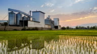Time lapse footage Rice Mill and reflection Day to night video