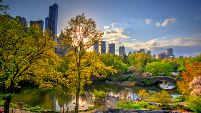 Time lapse HDR of Central Park at fall Autumn video