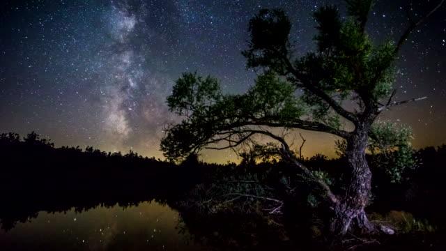 4K Time lapse - Milky Way Tree lake reflection video