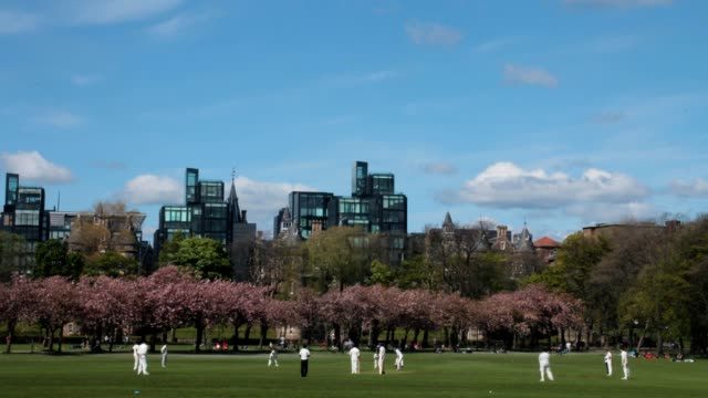 Time lapse of a cricket match in the park video