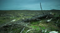 Time Lapse of Deforested Land video