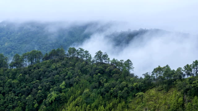Time lapse of fog rolls across flowing over mountains video