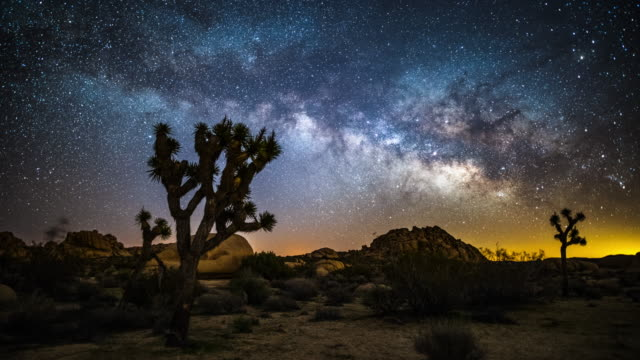 Time lapse of Milky Way over Joshua Trees video
