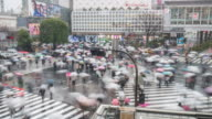 Time Lapse of Shibuya raining day people walking at Shibuya crossing video