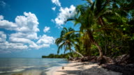 Time Lapse of Tropical Beach in Cuba video