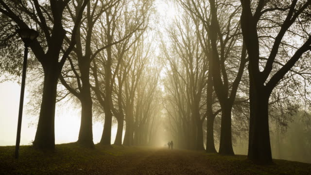 Time Lapse People Walking Running in a Foggy Country Road video