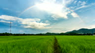 Time lapse - rainbow over rice field (Zoom_out) video