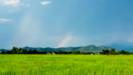 Time lapse - rainbow over rice field  (Zoom shot) video