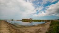 Time Lapse salt farming Naklua in the coastal, Thailand video