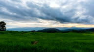 Time lapse - scenes of moving clouds with sunset at Terraced rice fields in Chiang Mai, Thailand (pan shot) video