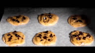 Timelapse: Chocolate Chip Cookies Baking in Oven video