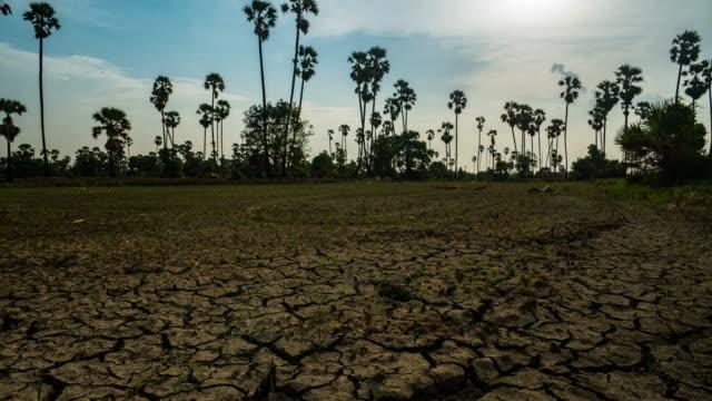 timelapse: cracked soil ground video