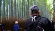 HD timelapse crowd people at Arashiyama Bamboo forest video