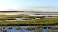 Timelapse dissipation of fog at sunrise over the marsh in a scenic area on the Yamal Peninsula in Siberia video