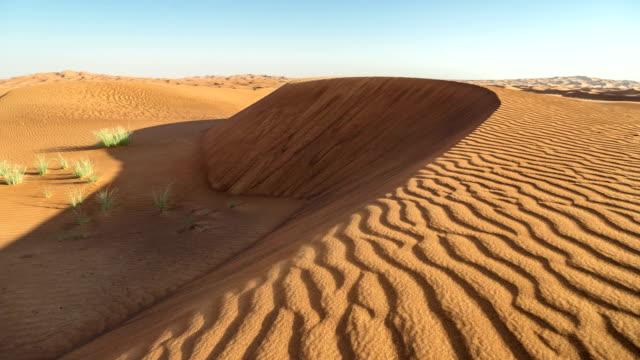 Timelapse Dunes and wind in Arabian Desert, Dubai, UAE video