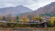 Time-lapse ELS ZoomIn Crowd of traveller in the world heritage Villages of Shirakawago video
