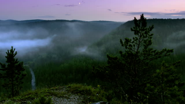 timelapse fog rising up above night forest, view from highland video