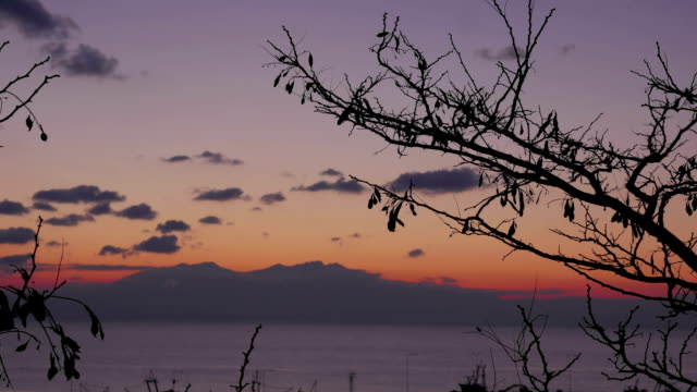 Timelapse in Nea Kallikratia, Greece at sunset seen branch of tree, sea, beautiful clouds and mountain of Olympus video