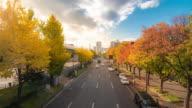 Time-lapse: Nagoya Autumn road at okamiya street Yabachi station Japan video